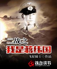 二战之我是蒋纬国